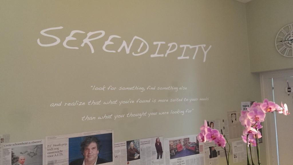 Serendipty 1