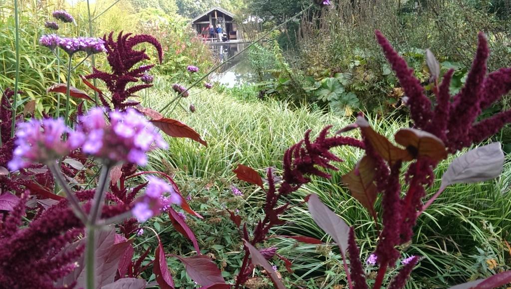 Open tuin Den Hout (3)