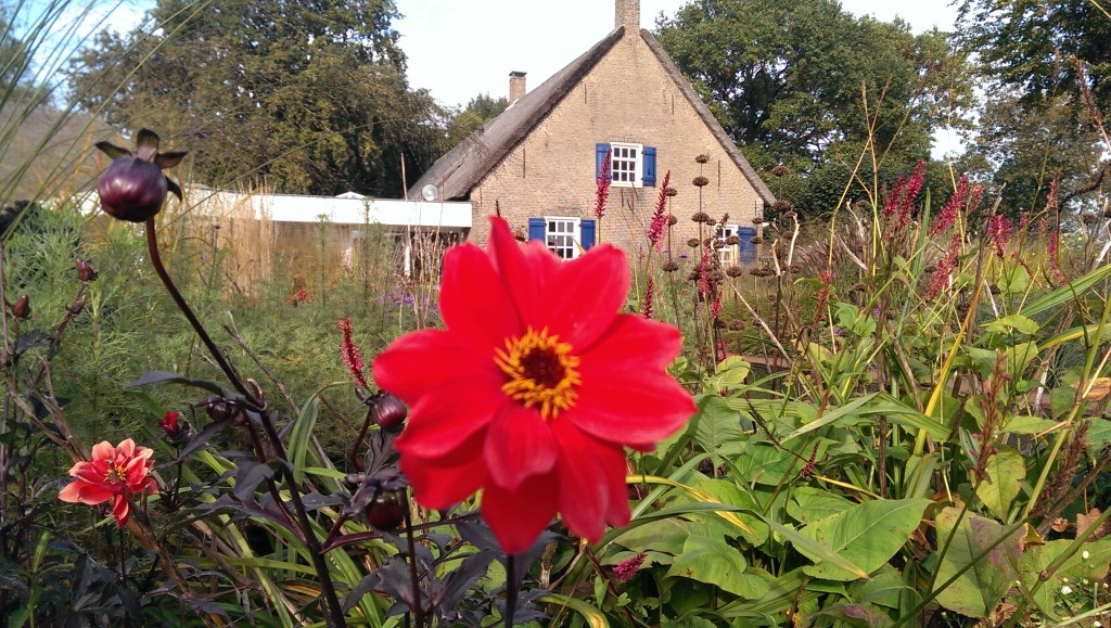 Open tuin Den Hout (9)