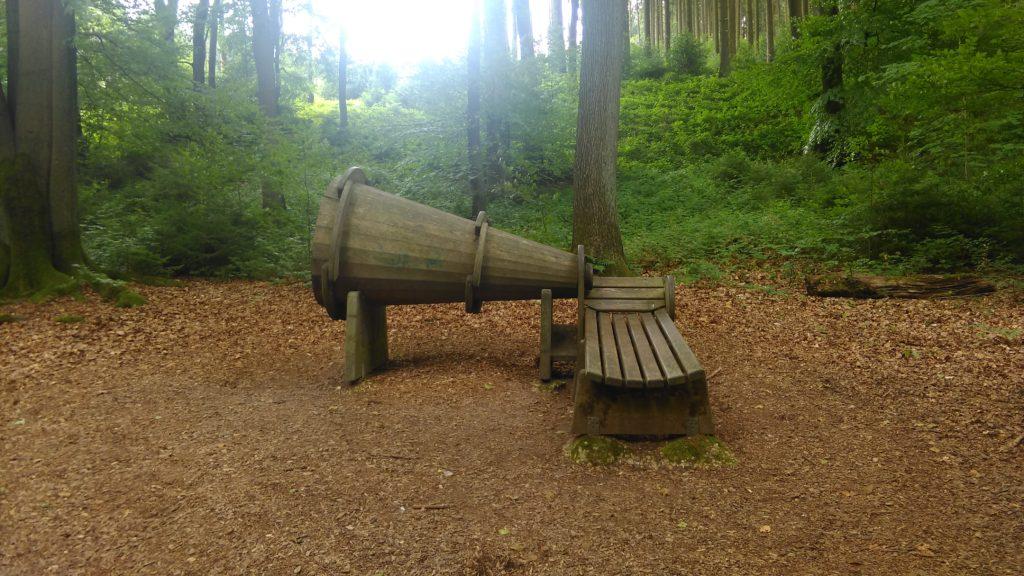 Luisteren naar het bos (1)