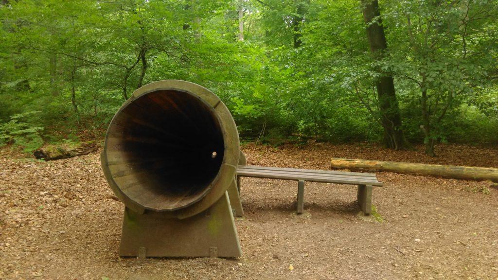 Luisteren naar het bos (2)